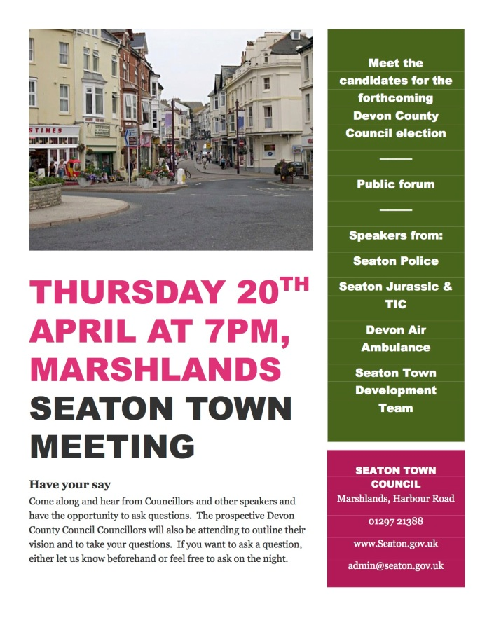 PDF Poster for town meeting