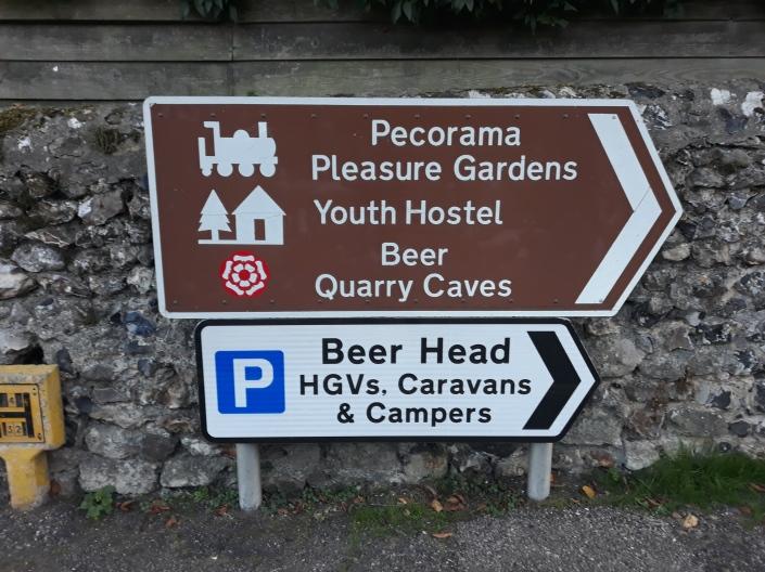Beer signs.jpg